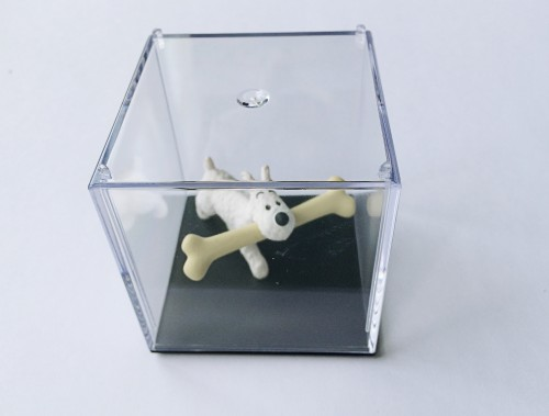Modular D Display Box